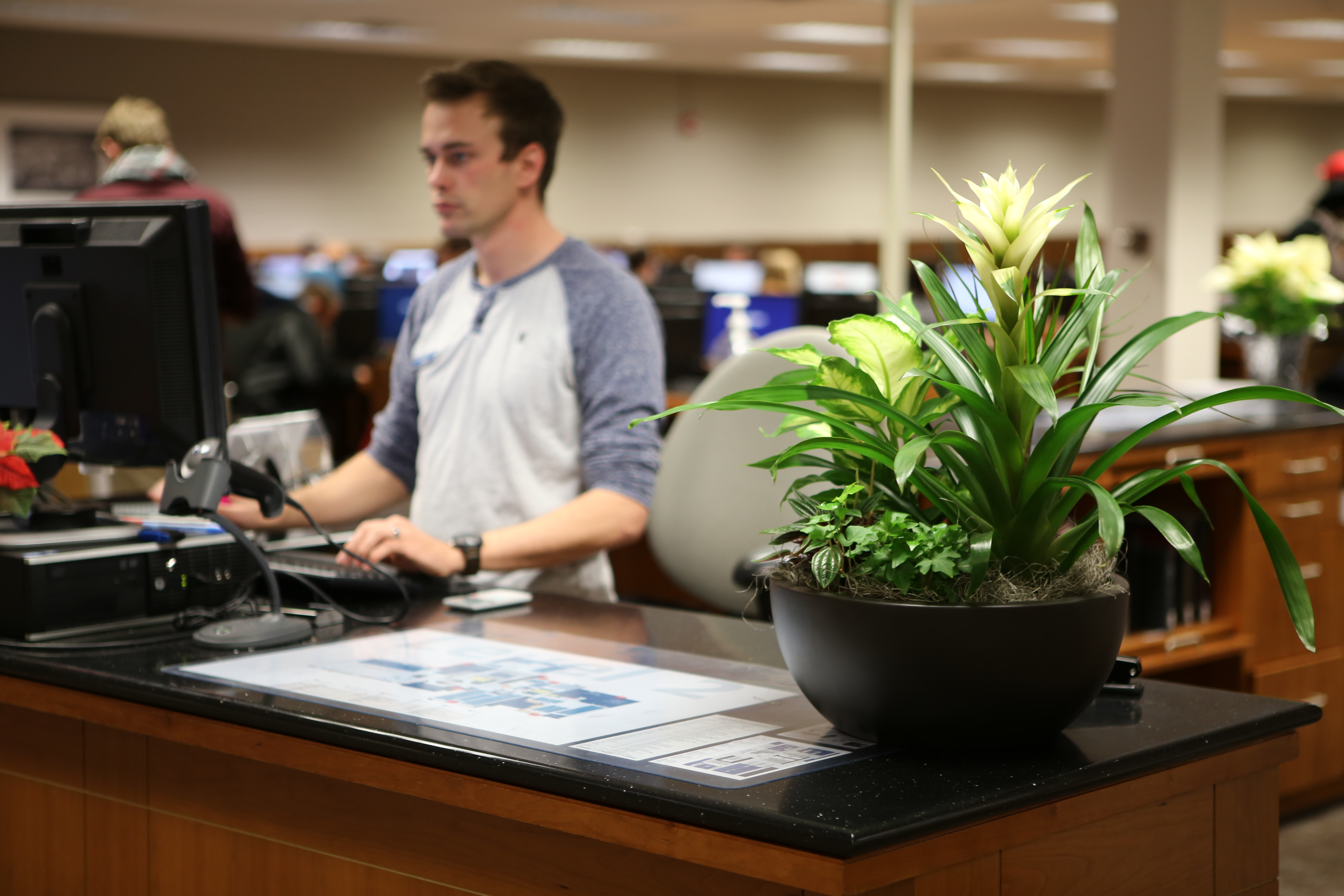 As A Side Note Plants Provided By The Byu Greenhouse Are Watered Them Library Our Facilities Student Employees