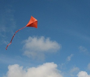 http://www.my-best-kite.com/images/how-to-build-kites-top.jpg